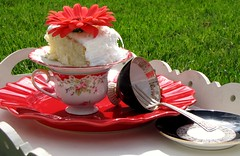 Teaparty in the Garden (:KayEllen) Tags: china grass cake whimsy tea tray teacups
