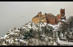 chateaux de ribeauvill (oliv67) Tags: winter snow france castles landscapes hiver alsace neige chateaux ribeauville routesdesvins