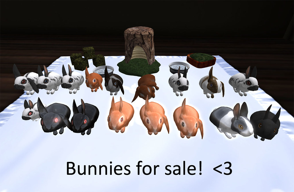 Bunnies for sale (again) :P