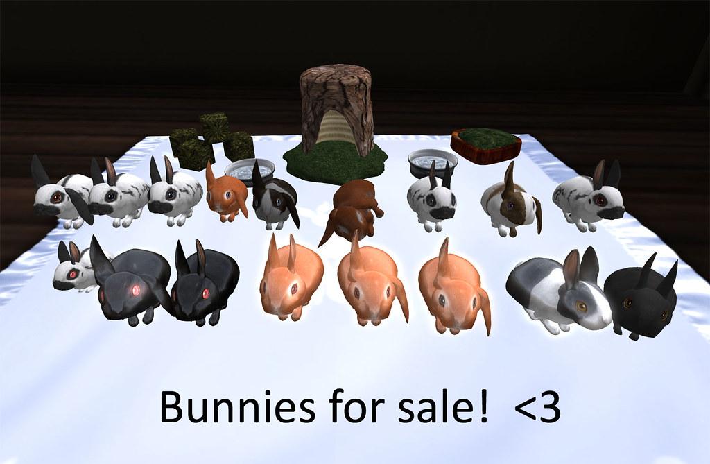 Bunnies for sale (again) :P