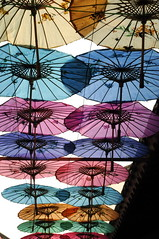 Chinese Parasols (loanarranger) Tags: umbrella parasol multicolored