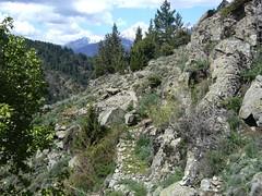 Sentier de montée aux bergeries de Ciaretta avant la traversée du ruisseau (Pruniccio ?)