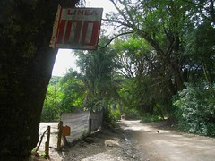 RIMG5881x1000 (Weltbummler) Tags: yerbabuena tucumn bosquenublado nuboselva