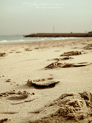 sands (s@mar) Tags: sea gulf kuwait sands salmiya gulfsea