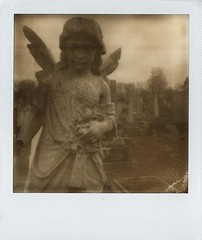 PX100 - Helen Habershon, 24 June 1909, 50 years (law7355) Tags: life old family bw love monochrome cemetery grave graveyard contrast analog dead polaroid sx70 death mono blackwhite day remember tip analogue remembrance past partner lived polaroid1000 firstflush silvershade impossibleproject theimpossibleproject