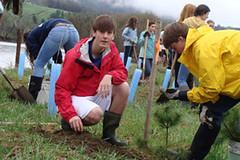 julian and jordan planting white pine