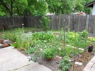 Garden, April 13
