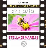Contest: Fotografa la tua primavera - http://blog.libero.it/contest