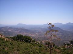 Panorama (Grabby Walls) Tags: sardegna travel sky italy mountain island italia sardinia cielo viaggi viaggio isola nuoro viaggiare monteortobene grabbywalls