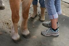 All Kinds of Feet (Read2me) Tags: she horse feet shoes boots cye gamewinner 15challengeswinner friendlychallenge thechallengefactory agcgwinner pregamewinner