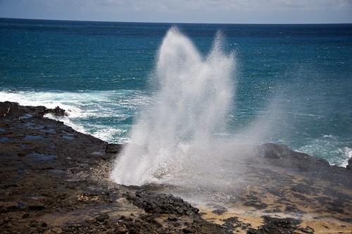 kauai2010 436