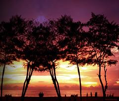 Evening Stroll (aroon_kalandy) Tags: light sunset orange india beach nature beauty creativity adobephotoshop artistic edited awesome kerala greatshot impressions naturelovers calicut beautifulshot justclouds anawesomeshot photoscape malayalikkoottam thesuperbmasterpiece sonyh50 aroonkalandy