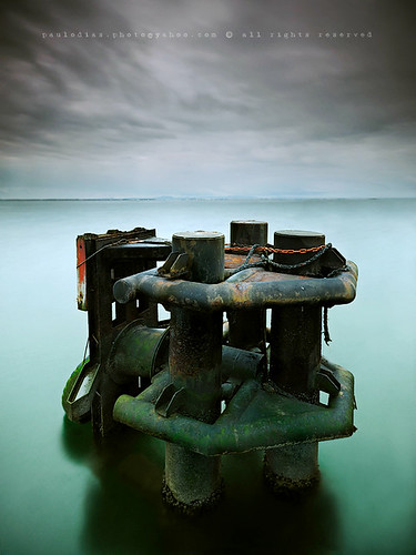 Sea Decay