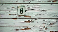 8 -|- 8 (erlingsi) Tags: norway number oc 169 volda sunnmre noreg nummer erlingsi numbering erlingsivertsen tvformat voldabackstage vassbotnvegen ikulissene