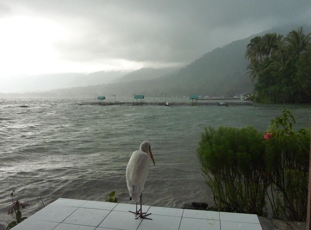 Sumatra-Lac Maninjau (34)