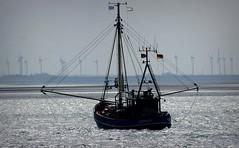 Auf Fangfahrt (funk_explosion) Tags: fishing norderney northsea nordsee wattenmeer niedersachsen kutter fischen krabbenkutter nordmeer windkraftrder osfriesland
