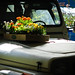 Jeep with Flowers