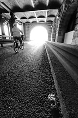 Paris Quais de Seine (Yann Beauson) Tags: light shadow bw paris france heineken blackwhite noiretblanc perspective pont bicyclette eos350d highlight quai velo contrejour yann biere cycliste pontalexandreiii quais uwa alexandreiii quaideseine pontalexandre3 boze3000 yannbeauson beauson flickr:user=yannbeauson