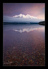 Singled Out (Ryan Dyar) Tags: winter light snow storm reflection fog sunrise montana rocks pebbles glaciernationalpark lakemcdonald stantonmountain northernrockies ryandyar ryandyarphotography
