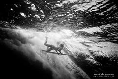 Kohanaiki Swell (SARAΗ LEE) Tags: ocean morning bw texture girl hawaii power surfer wave places bigisland therock pinetrees shortboard kailuakona duckdive sarahlee tiena ewamarine legothenego kohanaiki vivantvie ubf100