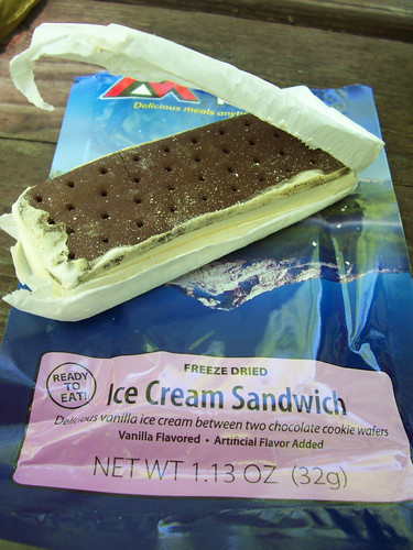 freeze dried ice cream sandwich