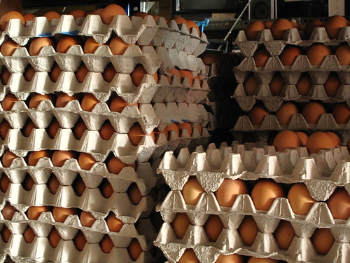 IMG_8556 鸡蛋,Eggs