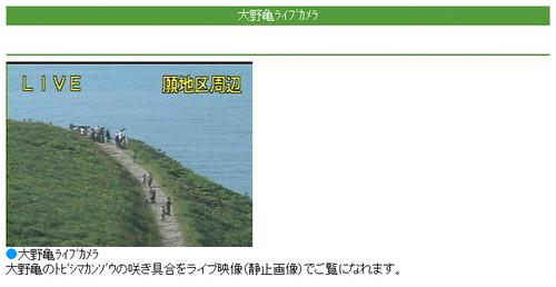 大野亀ライブカメラ--SOINON-