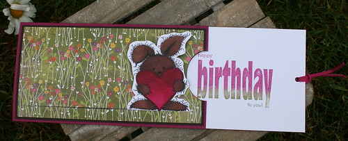 open cuddly birthday card