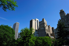 Central Park, New York City (llee_wu) Tags: 2010