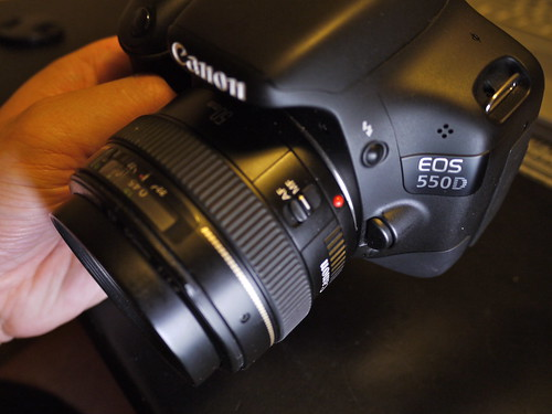 Side View: Canon EOS 550D (Rebel T2i / Kiss X4 Digital)