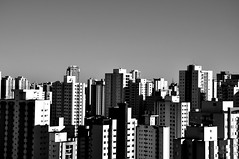 SP skylines (AlexJ (aalj26)) Tags: city cidade bw white black scale branco arquitetura de concrete sãopaulo gray selva cities skylines pb paisagem preto sampa jungle jorge e urbana alexander prédios urbanismo panorâmica concreto construção alexj paulicéia praçadaárvore bosquedasaúde aalj26 alexanderaljorge