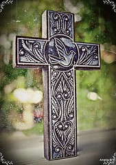 Engraved Cross (AmeliaPhotoAme©) Tags: hello family cats hot art cars love dogs beauty religious photography yahoo carved google amazon flickr child hand cross unitedstates photos miami misc mary mother objects images virgin cnn gmail dreams amelia msn facebook songlyrics whitepages twitter