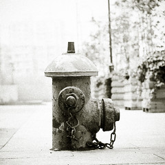 BW Hydrant (Dennis Kruyt) Tags: china blackandwhite bw 120 6x6 tlr film hydrant shanghai kodak seagull grain 1933 160asa ektacolor pro160iso