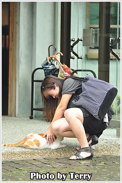 雨中的侯硐散策 (9)