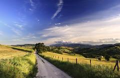 Sentiero di campagna (Massimo Feliziani) Tags: road rural montagne landscape nikon bravo strada country vista bianca veduta marche paesaggio macerata sibillini rurale steccato sterrata d700 marchigiana