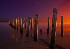 St Clair Groynes, after sunset, in moonlight (VineetMenon) Tags: light sunset colour nikon moonlight groynes startrail graal nikkor18028 nikond700 passiondclic