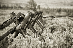 Shane's Fence (Abel Longoria) Tags: wyoming grandteton 135l 5dmk2 2010dcpt