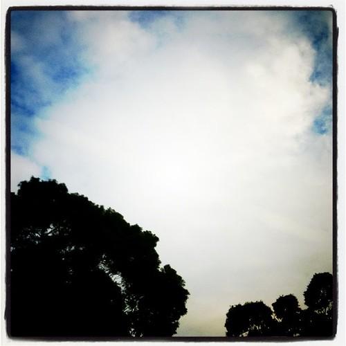 今天天很藍