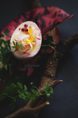 An Egg (Ira Rodrigues) Tags: egg pickled foodart art photography food darkbackground canon leaf stilllife conceptual