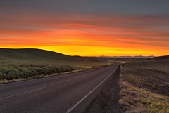 Palouse Sunrise (Alan Amati) Tags: amati alanamati usa us america american washington wa nw northwest pacificnorthwest palouse thepalouse sunrise dawn firstlight earlymorning early earlylight country rural road clouds hills glory glow orange glorious beautiful landscape fields farm predawn morning colfax steptoe spring topf25
