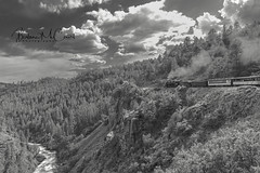 Durango & Silverton Steam Locomotive (Barb McCourt) Tags: steamlocomotive clouds historicaltrain trees animasriver rocks people durangosilvertontrain coal steam blackandwhitephotography blackandwhite bnw bw nikond810 nikonphotography nikon