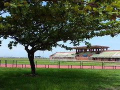 Running track (The Dutchlady) Tags: 2017 june campus nsysu morningwalk runningtrack public