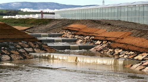 2009 23 décembre - renaturation de l'Aire et canal Galland 012