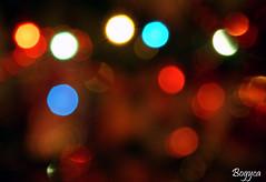 Christmas bokeh (Bogyca) Tags: christmas light colour night bokeh sony celebration dslr a200 digitalcameraclub sonyalpha sal1870 colorphotoaward sonyalphaa200 beyondbokeh
