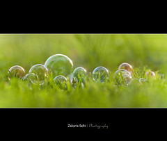 Dream About Me (Zakaria Salhi) Tags: green nikon bubbles ii nikkor 70200 f28 vr d300