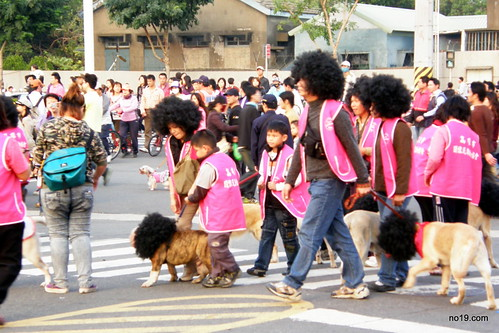 Afro Dogs - PC271537