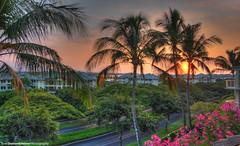 Hawaii Sunset HDR (Evan S. Photography) Tags: trees sunset orange sun photoshop hawaii nikon warm december palm 1855mm kona hdr 80degrees photomatix d40 hdrunlimited hdraddicted