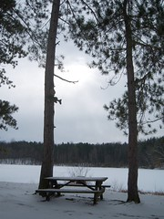 In the grayness of a bleak winter day in Ohio, not a good day for a picnic at Mogadore Reservoir even though a table is available (bjebie) Tags: ohio snow cold table picnic gray pines bleak mogadorereservoir mogadoreohio suffieldtownshipohio