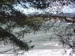20100101CapdAny2010aPortocolom (71) por arcverd
