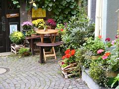 Hinterhof (nieklas) Tags: street plants flower table flora pflanzen blumen tisch bnke blten srase